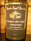 Santantonio_amarone03