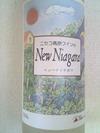 New_niagara
